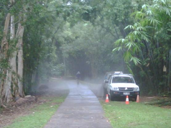 Botanic gardens Cairns